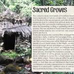 Keystone Foundation - Sacred Groves!