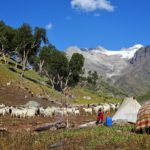 Fulbright in the Himalayas