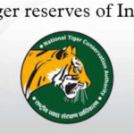 Dumping the Parliament to Save the Tiger